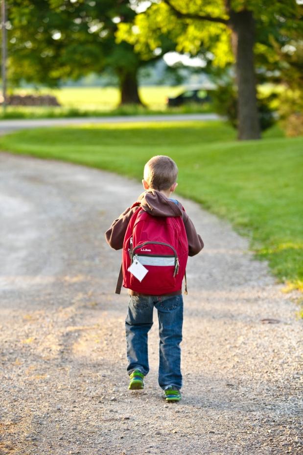 Canva - School, Backpack, Childhood, Education, Bag, Elementary (1)
